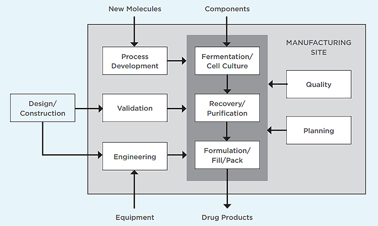 Figure 1: Functions and flows at a biomanufacturing site - ISPE Pharmaceutical Engineering
