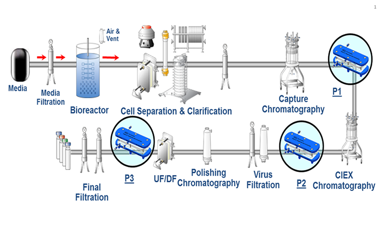 Figure 1: Schematic Of A Mab Production Process. The Capture Step Uses Affinity Chromatography; The Polishing Chromatography Is An Ion-exchange Chromatography. This Configuration Was Tested For In-line Concentration In Steps P1, P2, AND P3.