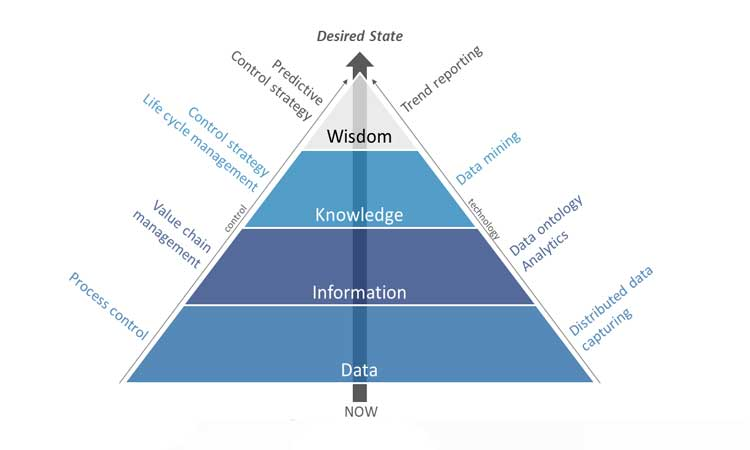 Figure 5: Pyramid of Wisdom