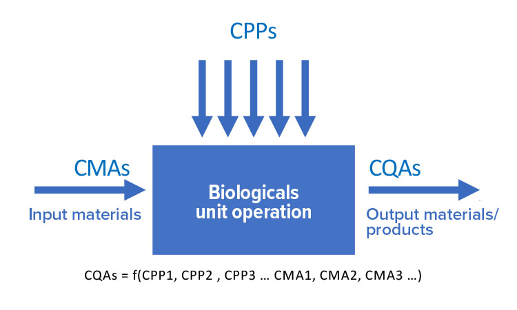 Figure 5: Relationship between CMAs, CPPs, and CQAs