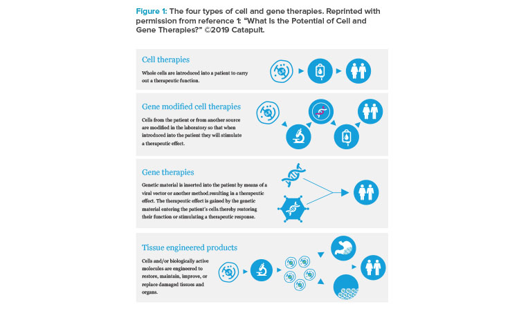 The four types of cell and gene therapies