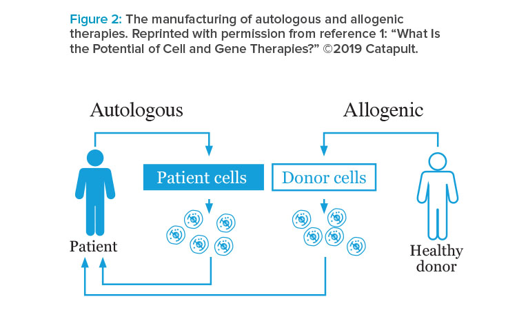 The manufacturing of autologous and allogeneic therapies