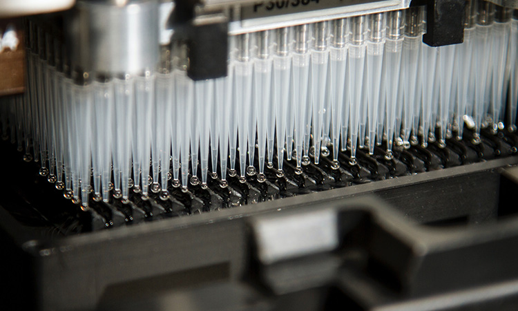 FDA Releases Guidance on Manufacturing, Supply Chain, & Drug Inspections