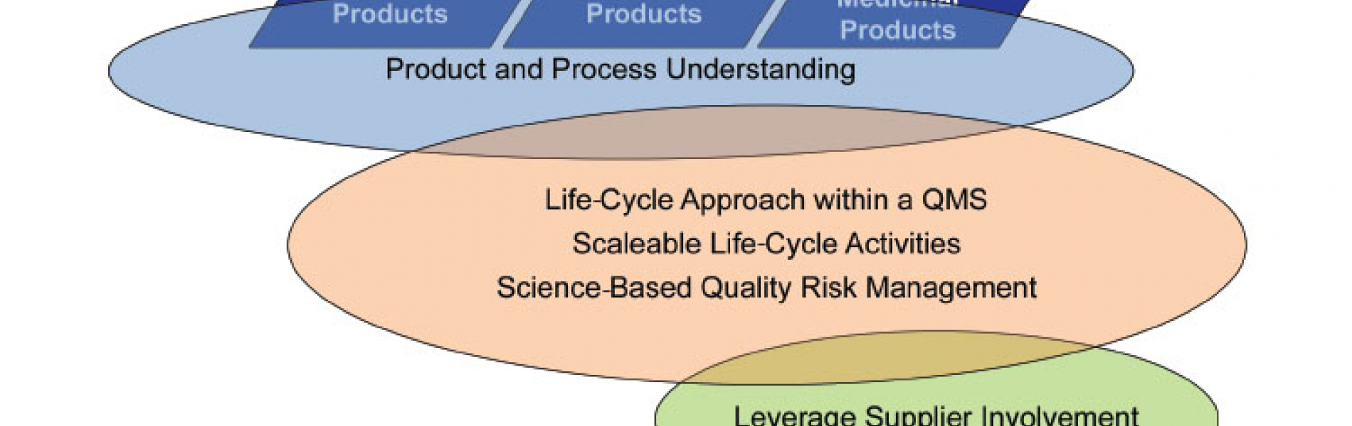 GAMP® Support for Pragmatic Quality & Risk-Based Approaches