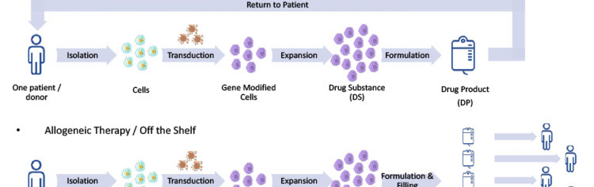 Figure 1: Cell therapy life cycles.