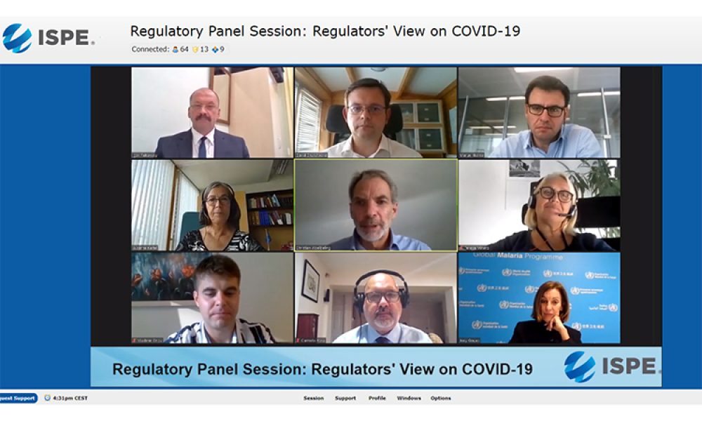 Regulatory Panel Addresses COVID-19 Challenges